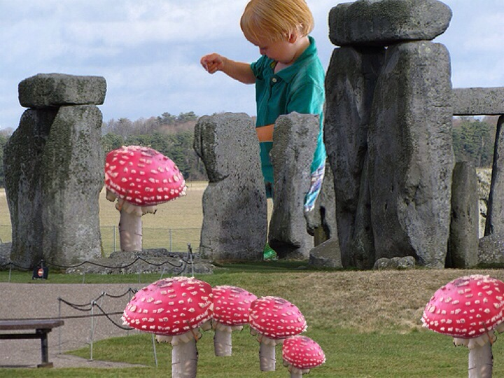DJ-Stonehenge-mushrooms