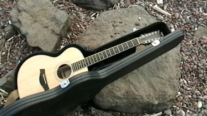 Taylor12String-Duluth